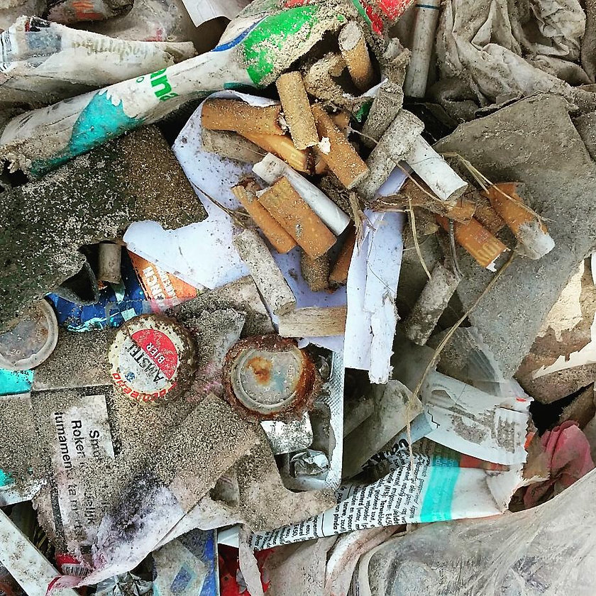 Marine litter collected at Te Amo Beach