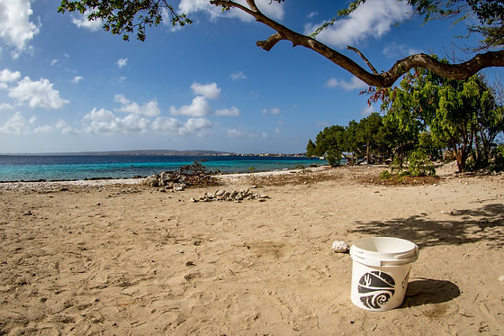 Bonaire beach after clean up - Photo by Amy Weir.jpg