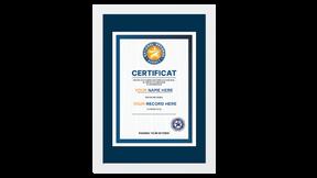 Официальный сертификат и медаль рекордсмена