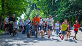 Самый массовый старт забега с собаками