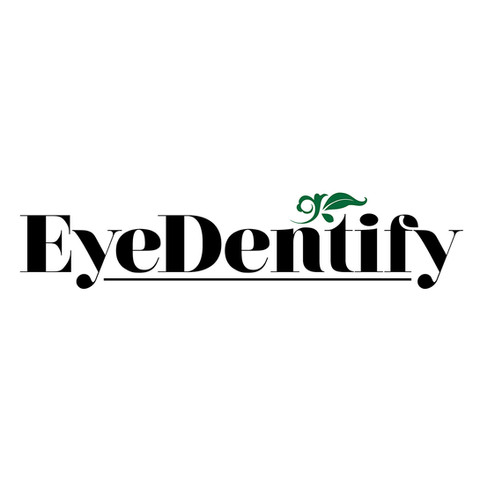 EyeDentify