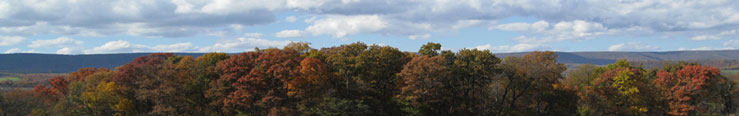 fall-small