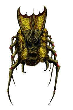 Arachnidoverlord