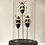 Thumbnail: Mini globe aux insectes