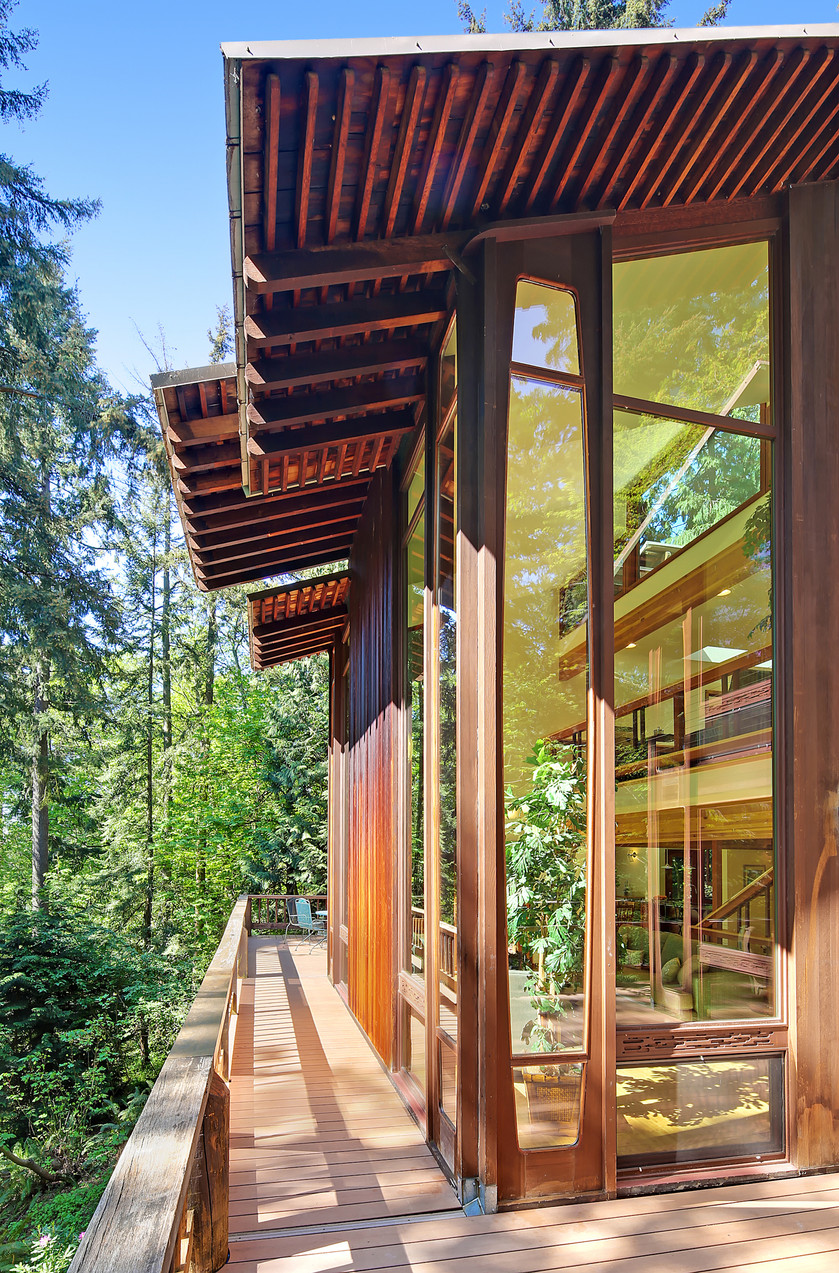 An architect's house in the trees or how to get close to nature in style