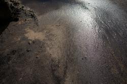 20151028-_DSC2868-2-24