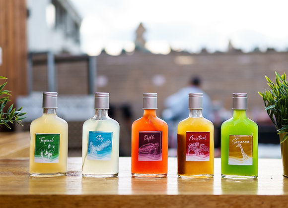 10 קוקטיילים מבוקבקים - לאירועים