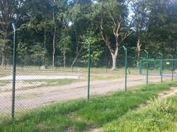 Der Spicher Wald ist ein Zaunwald!