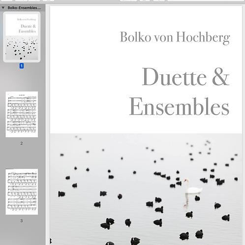 Bolko von Hochberg I Ensembles, Duette