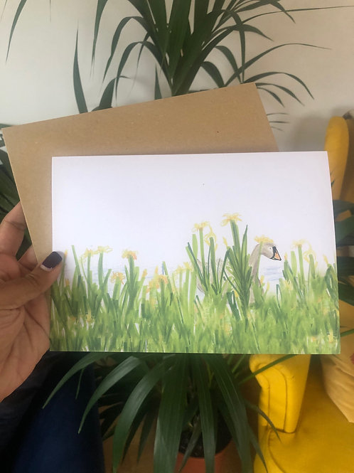 "Swan ""secret admirer"" greeting card"