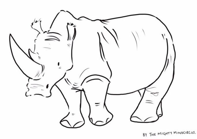Rhino c JPEG.jpg
