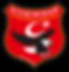 sivrihisar logo küçük.png
