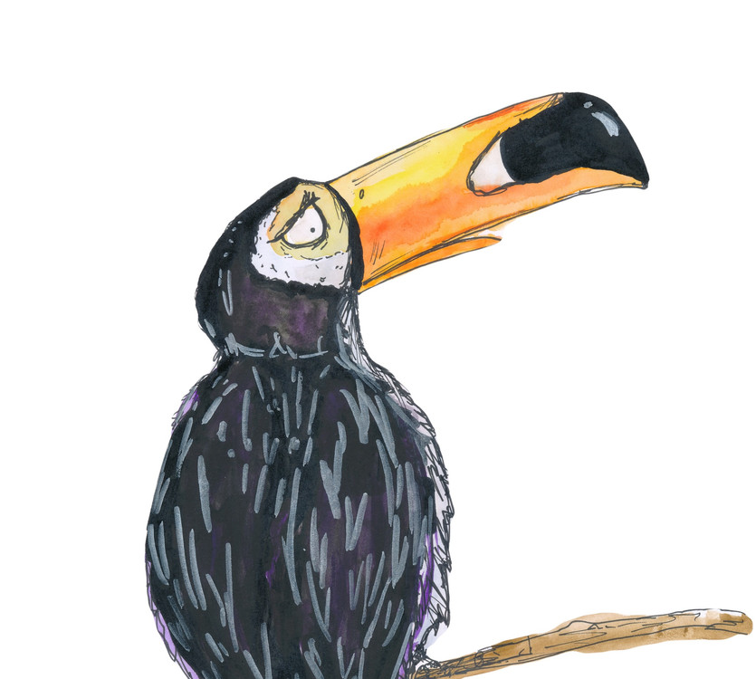 Archimedes Toucan