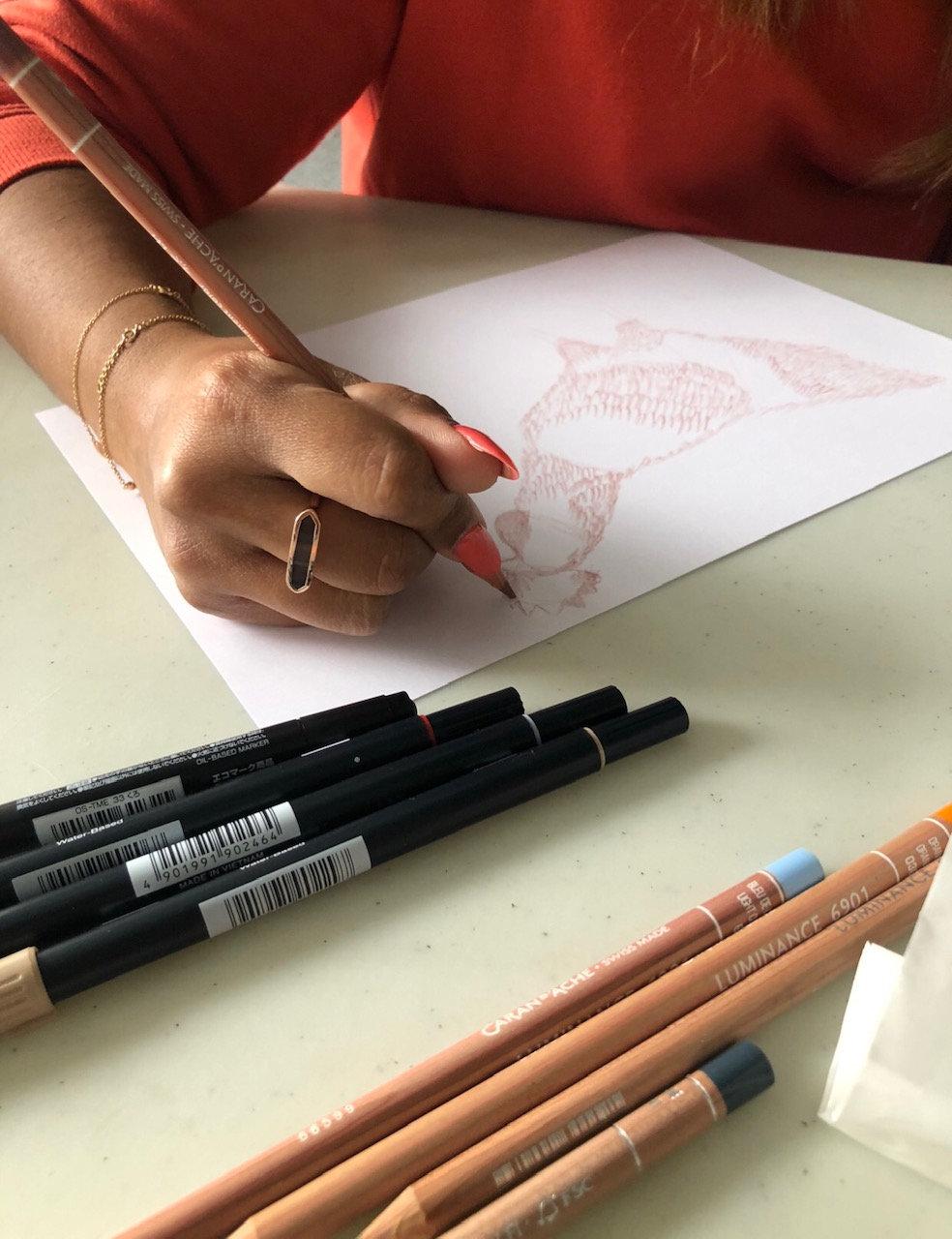 Illustrating birds for beginners