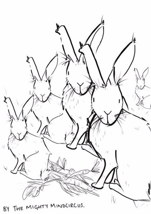 Group of Rabbits colour sheet.jpg