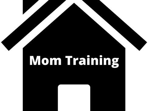 A School For Mom Training?