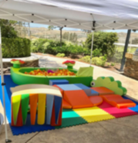 toddler fun mobile ball pit beverly hills