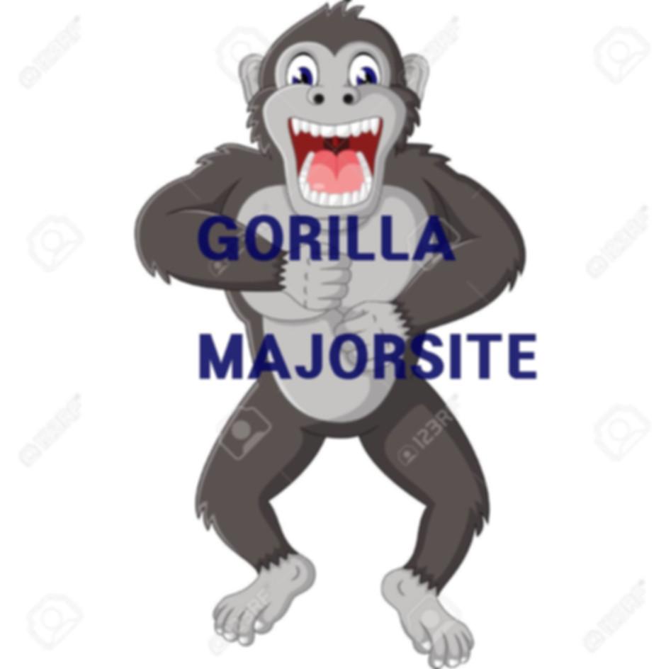 골리라의 메이저사이트