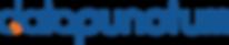 Datapunctum-logo-3.png