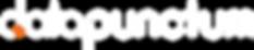 Datapunctum-logo-3_inverted.png
