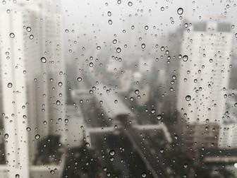 【Gサポート日記】気候リスク