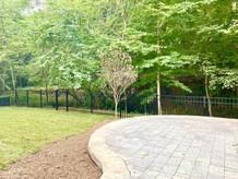 Backyard_4.jpg