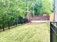 Backyard_2.jpeg