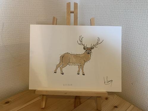Red deer Painting