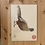 Thumbnail: Pheasant Original Painting