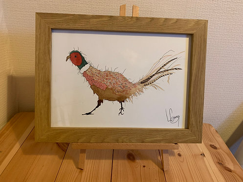 Colourful Pheasant Original Painting