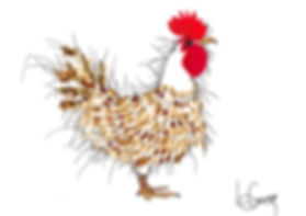 Cockeral .jpg