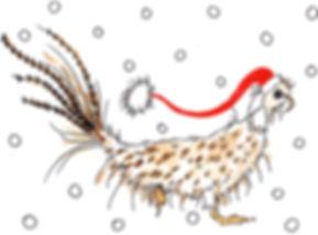 Santa Pheasant.jpg