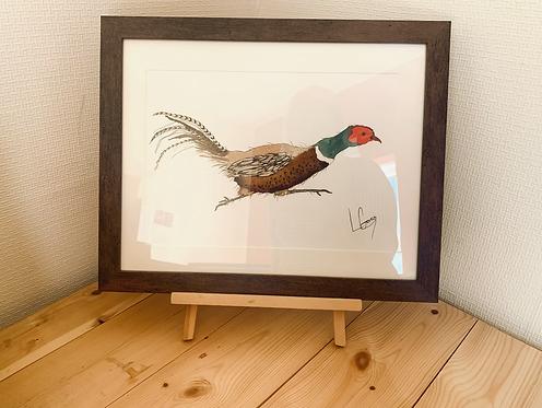 Sprinting Pheasant Original Painting
