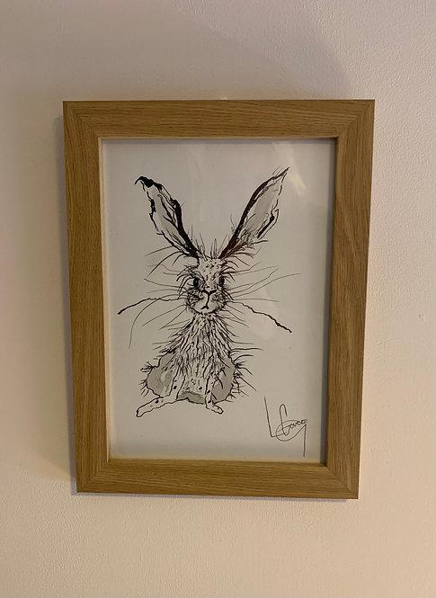 B&W Cheeky Hare