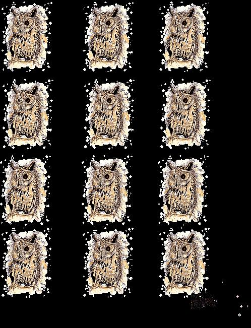 British Owl Cotton Tea Towel