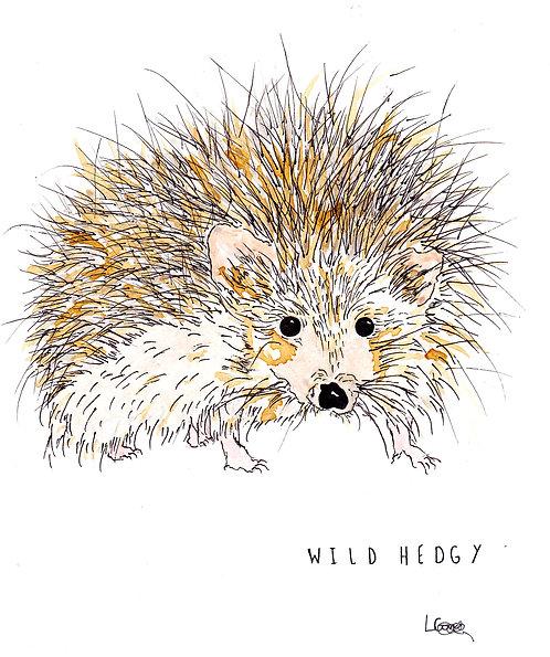 Wild Hedgy