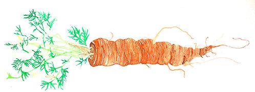 Long Carrot