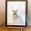Thumbnail: Winter Stag Original Painting