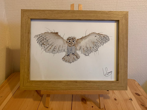 Winter Barn Owl Original painting