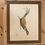 Thumbnail: Sprinting Pheasant Original Painting