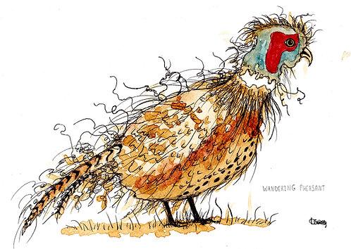 Wandering Pheasant