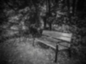 20170910_110347-2.jpg