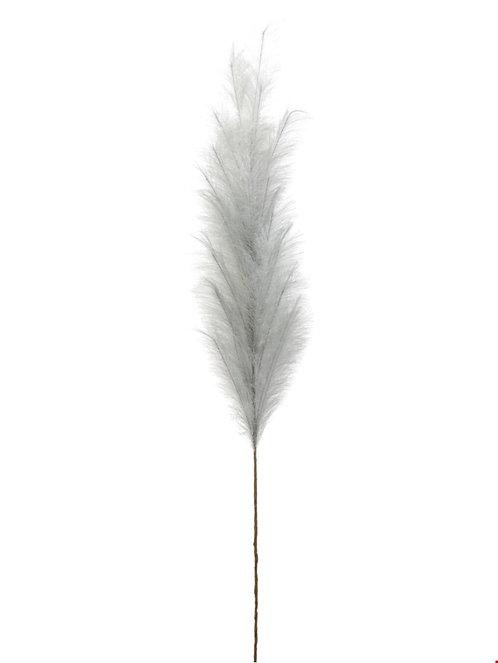 Zierfeder Taubenblau