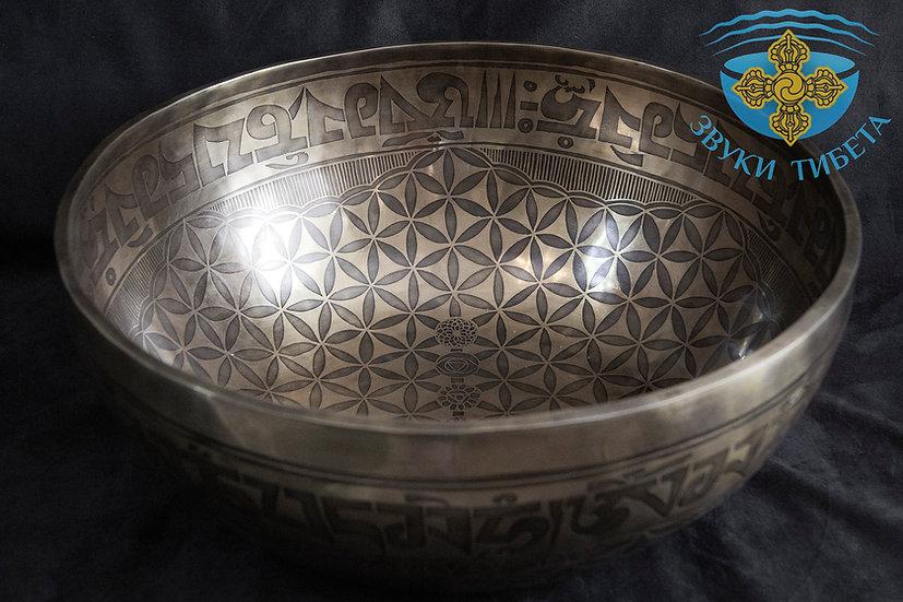 огромная тибетская чаша