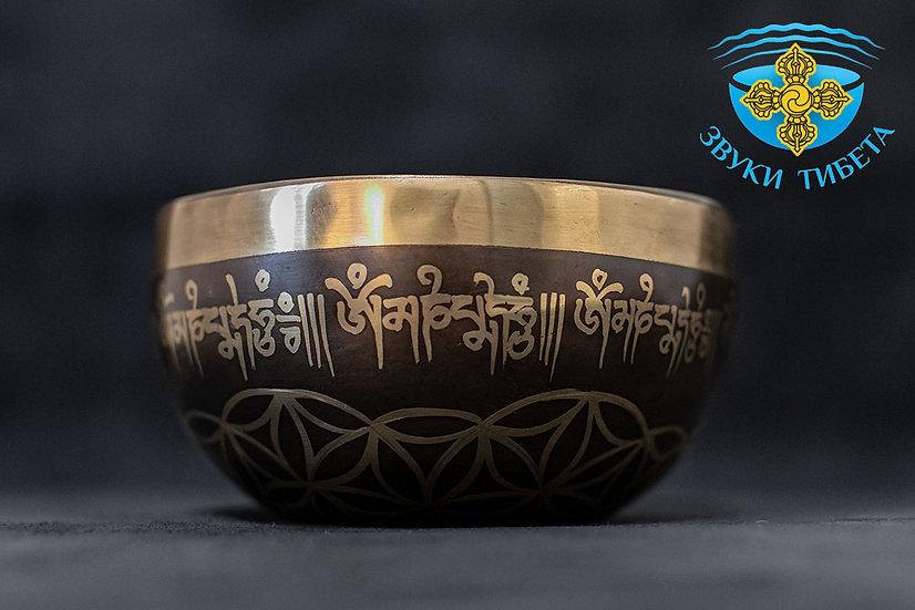 купить тибетскую поющую чашу