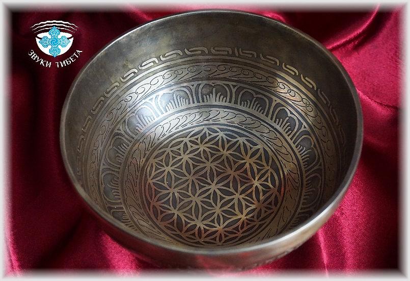 тибетские поющие чаши спб