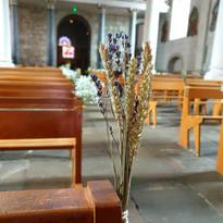 Bancs d'église mélant blé et lavande