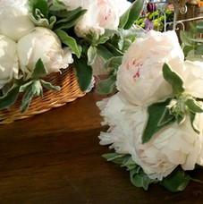 Des pivoines blanches pour les demoiselles d'honneur