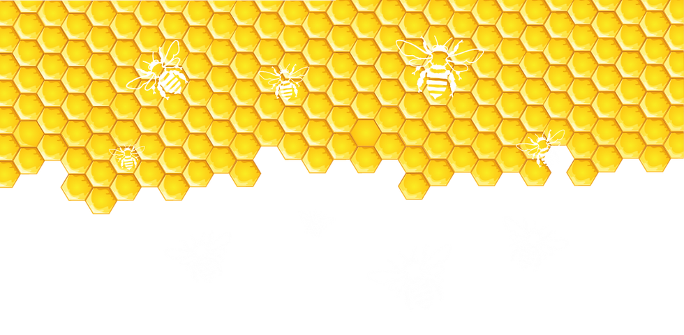 honeycomb_bg6-1024x502.png
