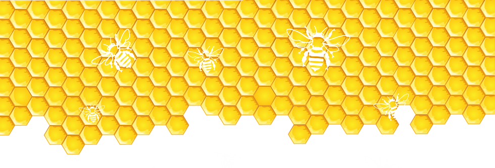 honeycomb_bg6-1024x502_edited.png
